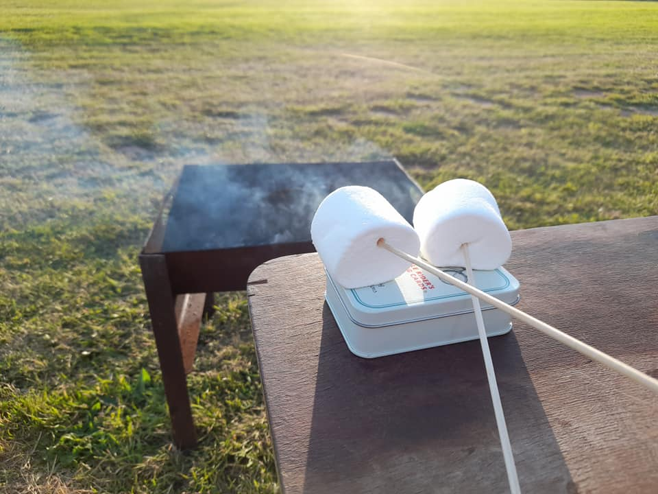 two marshmallows on sticks in front of a firepit
